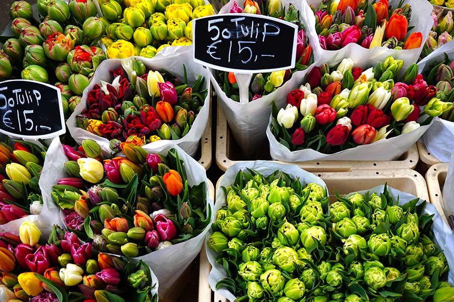 Bloemenmarkt_mercado_flores_amsterdam