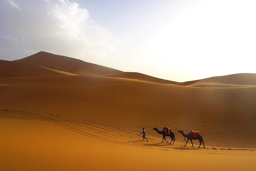 presupuesto excursión desierto marruecos