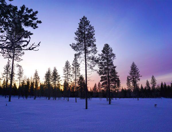 presupuesto para viajar a laponia en invierno