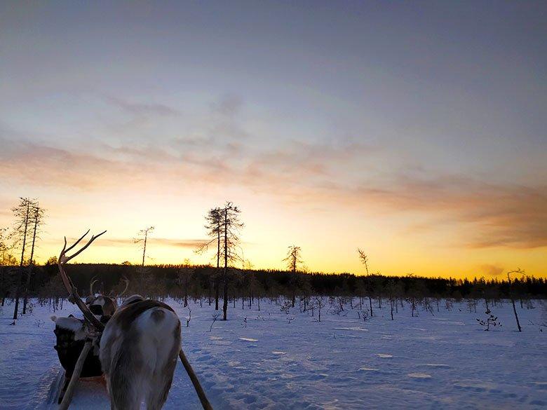 paisajes de Laponia en invierno