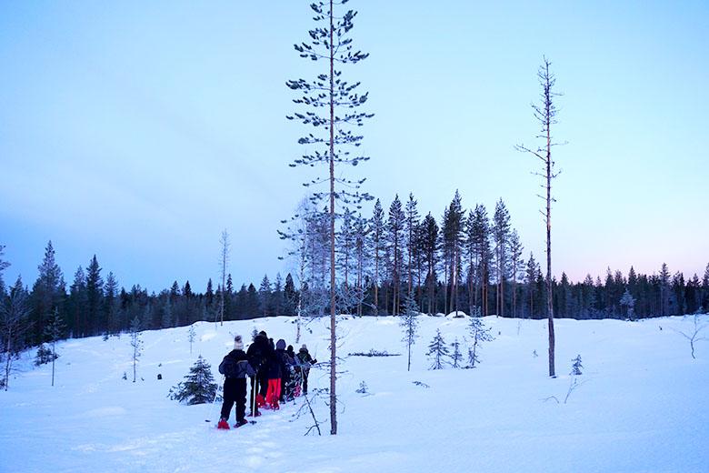 actividades que hacer en Laponia