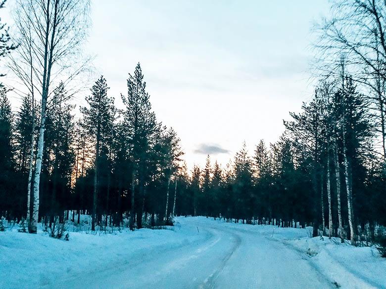 Cómo moverse por Laponia