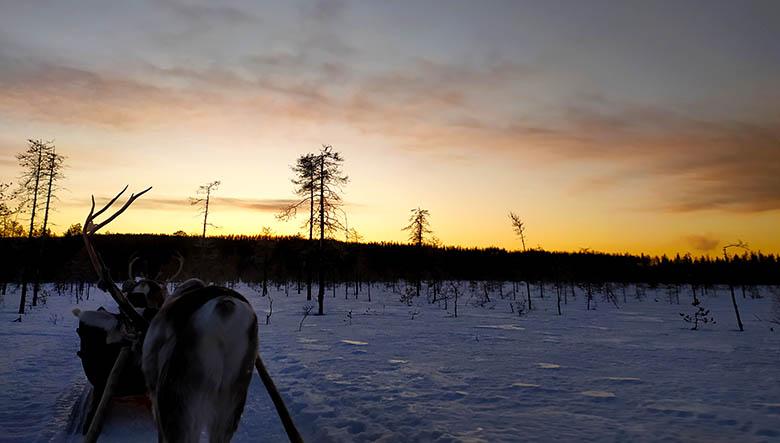 consejos para viajar a Laponia en invierno