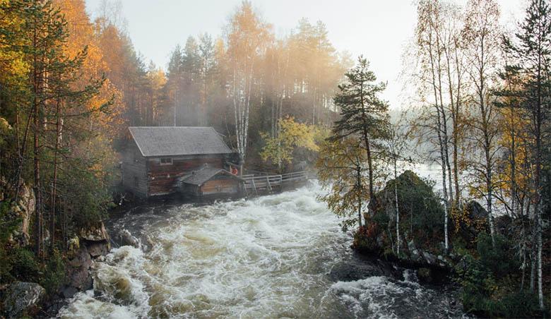 viajar a Laponia en verano
