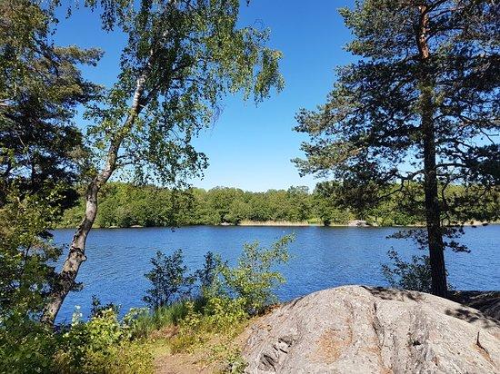 naturaleza en Suecia