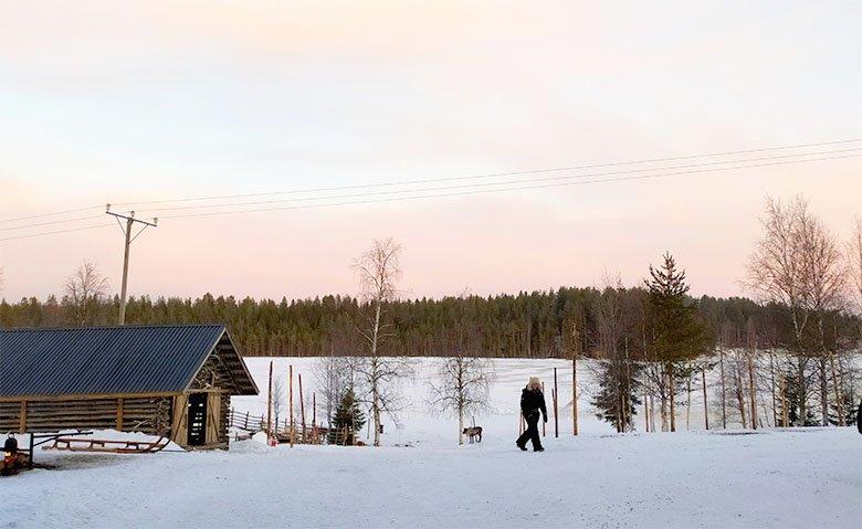 consejos para organizar un viaje a Laponia por libre