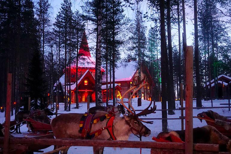 renos en el pueblo de Papá Noel Rovaniemi