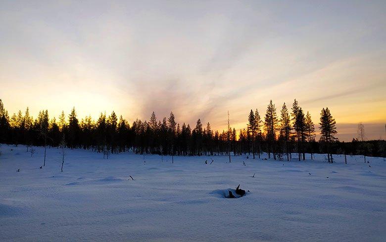 viajar a Laponia en invierno