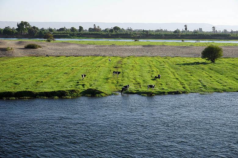 rio nilo desde crucero egipto